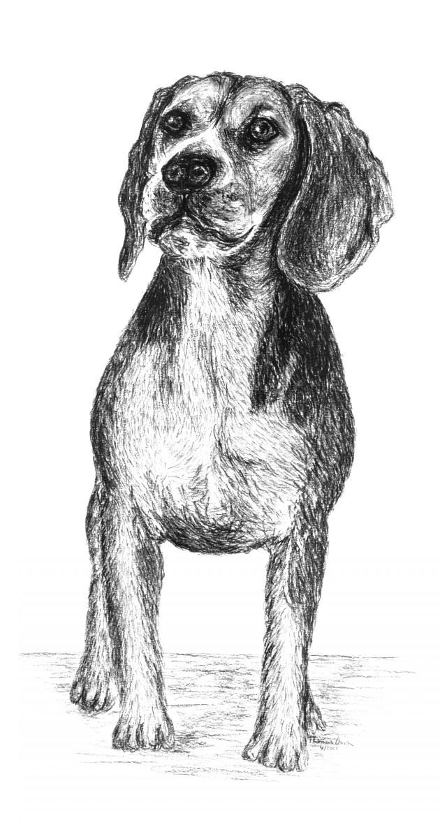 Wunderbar Hunde Färben Seiten Bilder - Ideen färben - blsbooks.com